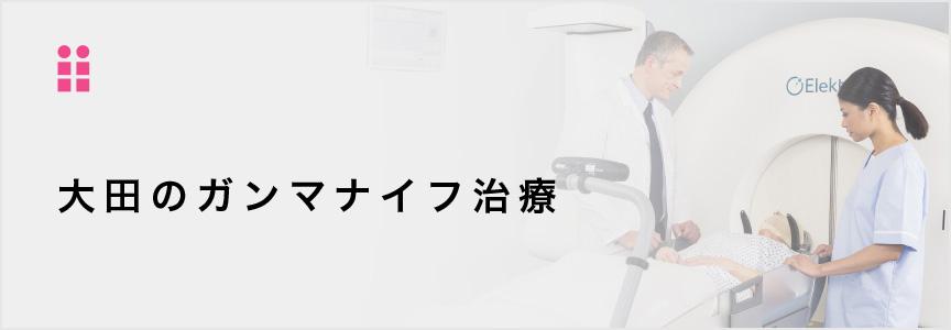 大田のガンマナイフ