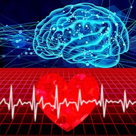 脳卒中と心臓病